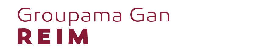 société Groupama Gan Reim